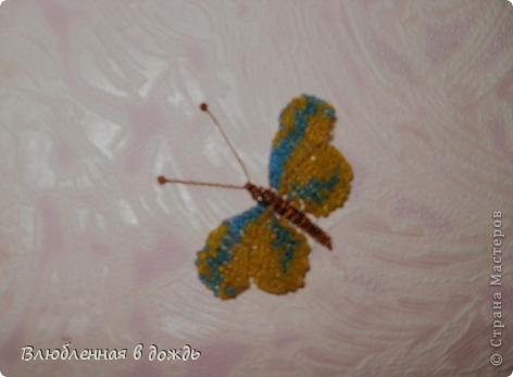 Добрый день, дорогие мастера и мастерицы! Несколько дней назад нашла коробочку с бабочками,которых делала ещё 5-6 лет назад, решила украсить ими стену в своей комнате, но их оказалось не очень много и вот сижу ежедневно делаю по несколько бабочек. Вот что получается: фото 5