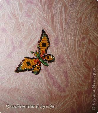 Добрый день, дорогие мастера и мастерицы! Несколько дней назад нашла коробочку с бабочками,которых делала ещё 5-6 лет назад, решила украсить ими стену в своей комнате, но их оказалось не очень много и вот сижу ежедневно делаю по несколько бабочек. Вот что получается: фото 2
