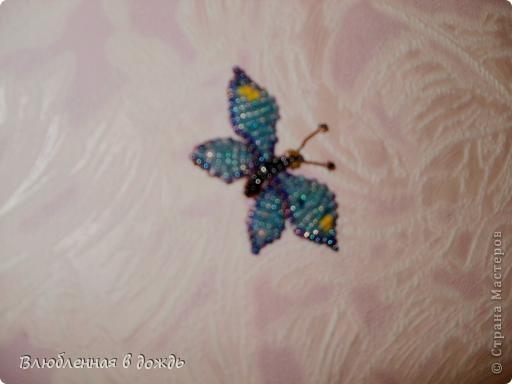 Добрый день, дорогие мастера и мастерицы! Несколько дней назад нашла коробочку с бабочками,которых делала ещё 5-6 лет назад, решила украсить ими стену в своей комнате, но их оказалось не очень много и вот сижу ежедневно делаю по несколько бабочек. Вот что получается: фото 3