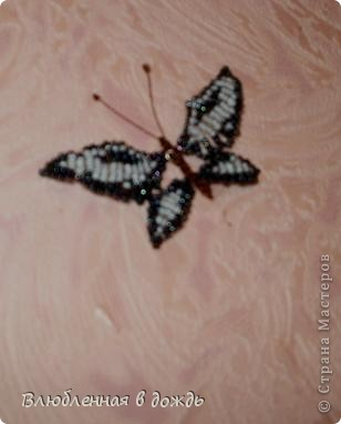 Добрый день, дорогие мастера и мастерицы! Несколько дней назад нашла коробочку с бабочками,которых делала ещё 5-6 лет назад, решила украсить ими стену в своей комнате, но их оказалось не очень много и вот сижу ежедневно делаю по несколько бабочек. Вот что получается: фото 6