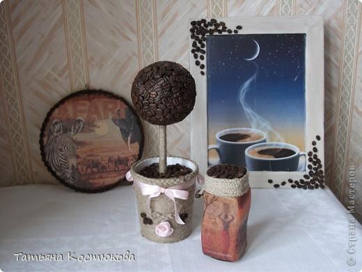 Кофейное дерево и все остальное. фото 1