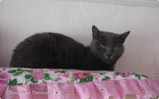 Насмотревшись телепередач с участием кошачьих психологов,мы решили-у нашей Муры должна быть своя личная территория. фото 4
