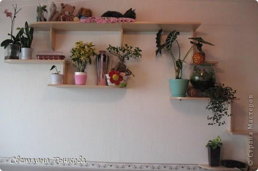 Насмотревшись телепередач с участием кошачьих психологов,мы решили-у нашей Муры должна быть своя личная территория. фото 2