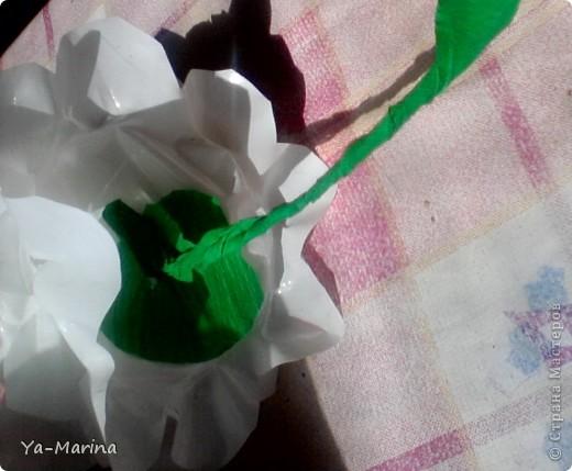 Моя мама делала раньше к  празднику победы такие цветы. Сегодня сынуля сказал, что в школу им нужны белые цветы, и мы дружно сели их делать, заодно решили отснять процесс изготовления. фото 13