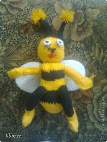 Бешеная пчелка фото 1
