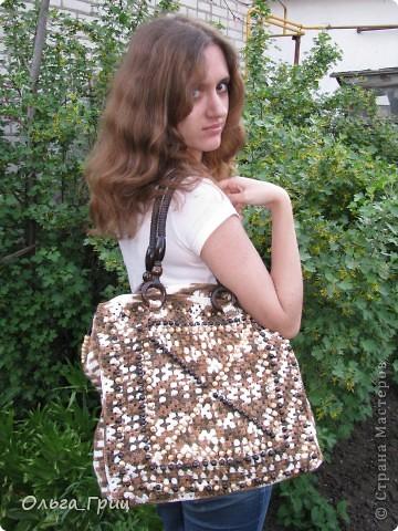 Вот такая сумка у нас получилась благодаря презенту от Голубки! фото 1