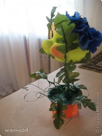 "заказ для садика""василек"" фото 2"
