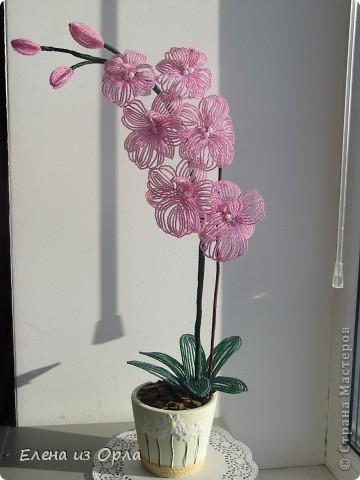 На самом деле эту орхидею я начала плести раньше, чем белую. Но так, как не хватило бисера на листики и долго не было завоза, она получилась у меня второй. Орхидея с опозданием. фото 3