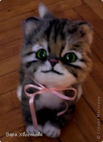 Котеночек Тимошка 26 см Сидит на полу Мурлыкает) фото 1
