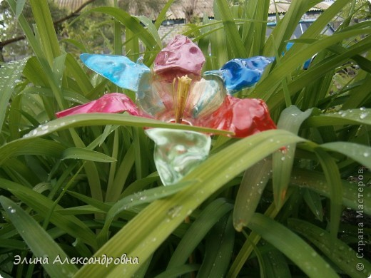 Вот такой цветочек растет у нас во дворе)))Делать было нечего вот и придумала сделать такой цветочек) фото 2