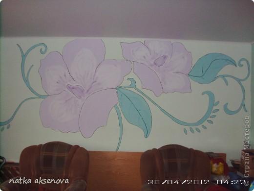 рисунок на стене - размер 2м на 4м фото 1
