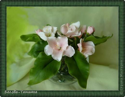 Приветствую всех жителей страны! Наконец то весна, всё цветёт и пахнет, под впечатлением налепила цветочки.  Лепила яблоневый цвет, не уверена что похоже... фото 1
