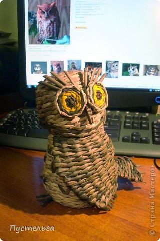 Что только не символизирует сова! Но мы выбираем самое нужное и плетём сову-шкатулку. фото 12