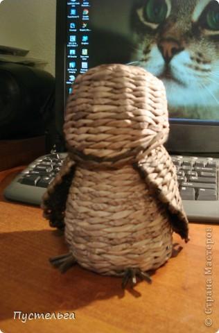 Что только не символизирует сова! Но мы выбираем самое нужное и плетём сову-шкатулку. фото 8