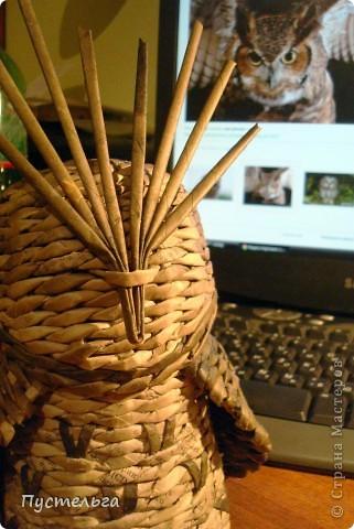 Что только не символизирует сова! Но мы выбираем самое нужное и плетём сову-шкатулку. фото 10