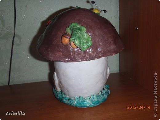 Вот такой вот грибочек у меня появился! фото 4