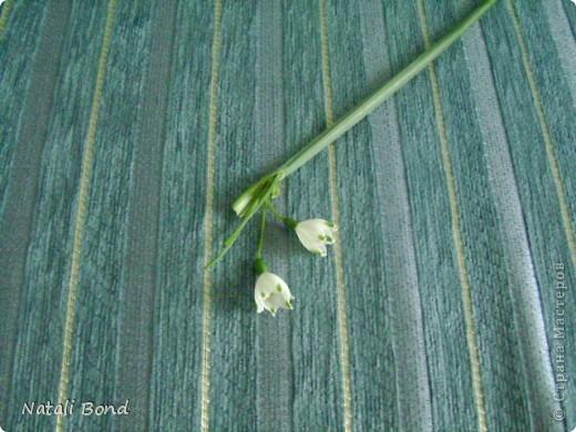 """Доброго дня СМ ее жители!!!!Очень рада Вас видеть!!!!Я к Вам с просьбой...Кто -нибудь знает ,что это за цветок????Слепить-то слепила ,а как """"его зовут""""""""не спросила...,вот теперь и мучаюсь в догадках...,сказали - птица-млечник??!!!Но в интернете такого названия нет...,а вопрос то мучает...,может -быть кто-то знает???!!!Подскажите пожалуйста!!!Это мой слепленный... фото 7"""