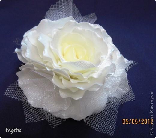 Просто розы фото 3