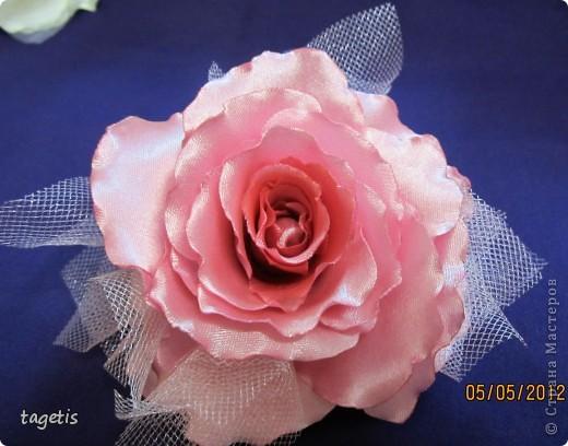 Просто розы фото 5