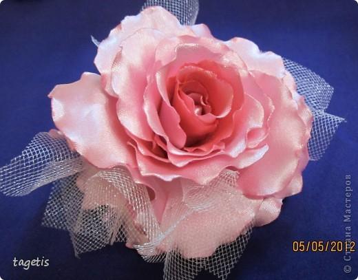 Просто розы фото 6