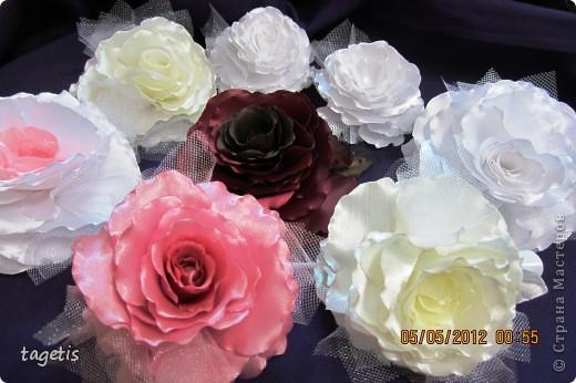 Просто розы фото 13