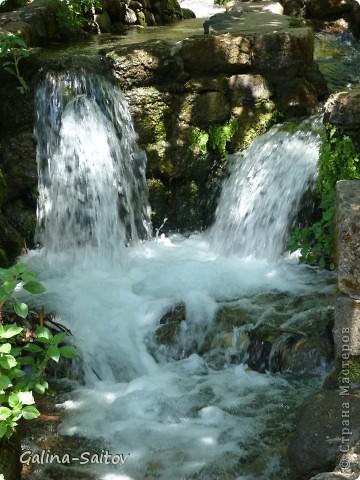 Это водопад. В этом году в Израиле было много дожей, поэтому сейчас все цветет и благоухает. Этот водопад находится на севере Израиля, не далеко от Голанских высот. Место потрясающее фото 2