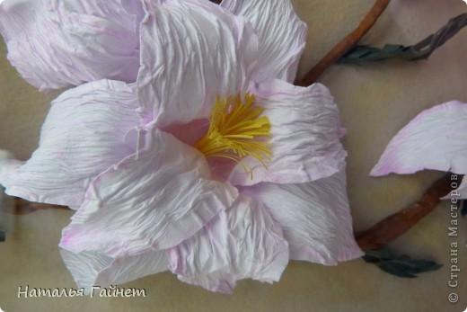 Здравствуйте, дорогие мои жители Страны Мастеров!!!!! С прекрасным Вас праздником Днем Победы! Пусть Ваша жизнь будет чиста, легка и прекрасна, как замечательные цветы магнолии! фото 10