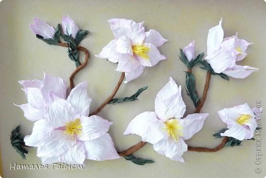 Здравствуйте, дорогие мои жители Страны Мастеров!!!!! С прекрасным Вас праздником Днем Победы! Пусть Ваша жизнь будет чиста, легка и прекрасна, как замечательные цветы магнолии! фото 2