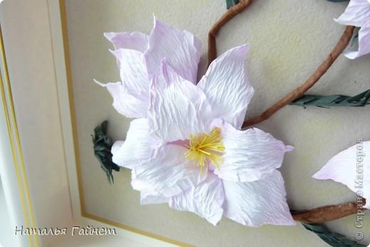 Здравствуйте, дорогие мои жители Страны Мастеров!!!!! С прекрасным Вас праздником Днем Победы! Пусть Ваша жизнь будет чиста, легка и прекрасна, как замечательные цветы магнолии! фото 3