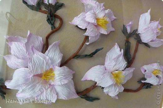 Здравствуйте, дорогие мои жители Страны Мастеров!!!!! С прекрасным Вас праздником Днем Победы! Пусть Ваша жизнь будет чиста, легка и прекрасна, как замечательные цветы магнолии! фото 8