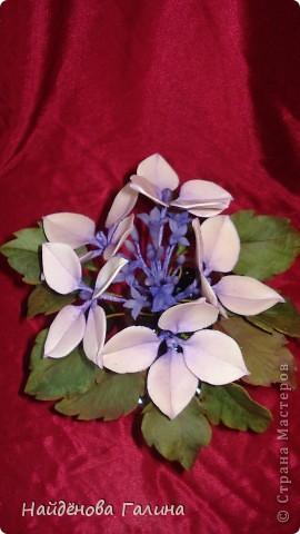 Здравствуйте,дорогие мастера и мастерицы СМ!Хочу показать Вам орхидею и гортензию. фото 6