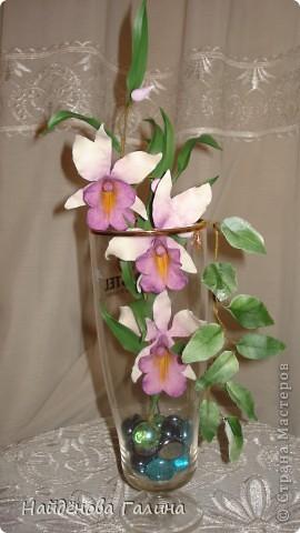 Здравствуйте,дорогие мастера и мастерицы СМ!Хочу показать Вам орхидею и гортензию. фото 1