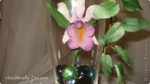Здравствуйте,дорогие мастера и мастерицы СМ!Хочу показать Вам орхидею и гортензию. фото 3