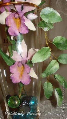 Здравствуйте,дорогие мастера и мастерицы СМ!Хочу показать Вам орхидею и гортензию. фото 2