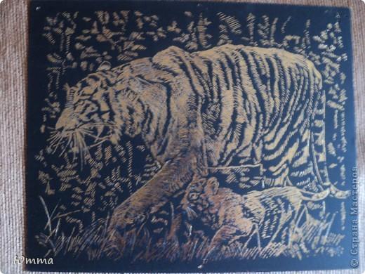 Мать тигрица и маленький львёнок) фото 1