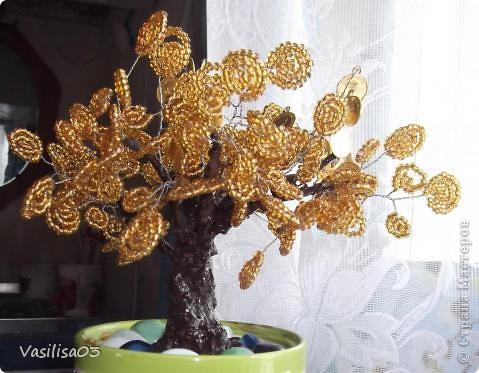 Золотое денежное дерево
