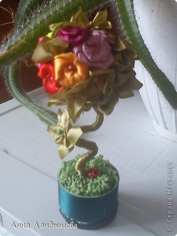А у меня вот такие цветы-счастья! фото 7