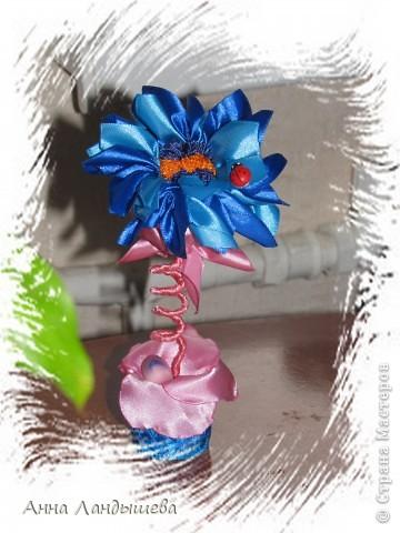 А у меня вот такие цветы-счастья! фото 1