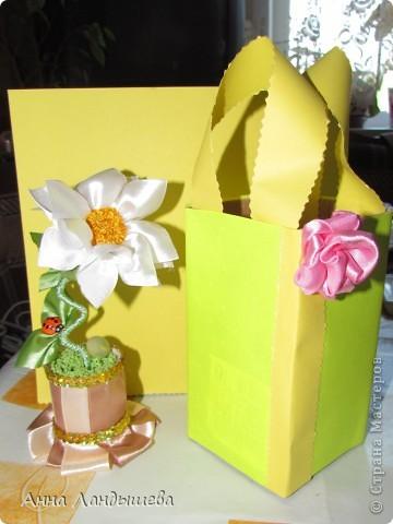А у меня вот такие цветы-счастья! фото 3
