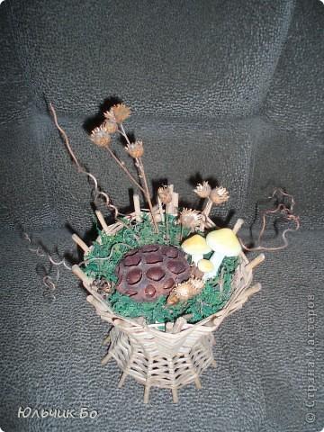 Вариант №1. Внутри оазис, сверху мох и немного сизали. Далее фантазируем с сухоцветом и лозой.   фото 1