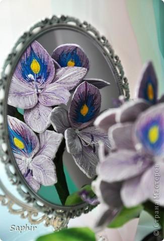 Другое название - эйхорния красивейшая. Недавно открыла для себя этот цветок и хочу представить его вам, цветочные мастерицы.   фото 6