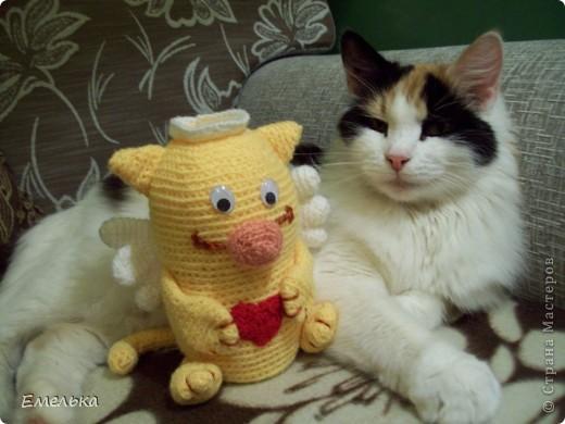 Кошачий ангел фото 2