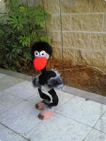 Это моя первая кукла-марионетка,которую я сделала на курсе кукол.Получился страусёнок по имени Муги.Вот такое странное имячко.Но мне кажется,что ему оно подходит. Кукла вырезана из поролона,сверху обклеена материалом Флиз,волосы,тело и крылья связаны крючком из пряжи-травки. Муги любит посидеть на дереве-оттуда далеко видно. фото 3