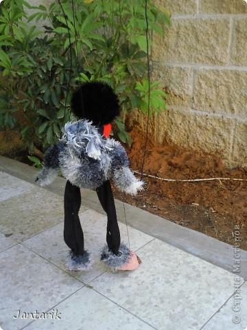 Это моя первая кукла-марионетка,которую я сделала на курсе кукол.Получился страусёнок по имени Муги.Вот такое странное имячко.Но мне кажется,что ему оно подходит. Кукла вырезана из поролона,сверху обклеена материалом Флиз,волосы,тело и крылья связаны крючком из пряжи-травки. Муги любит посидеть на дереве-оттуда далеко видно. фото 5