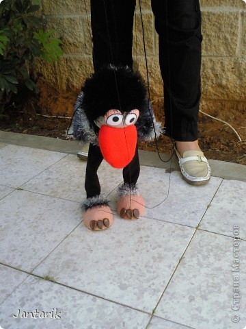 Это моя первая кукла-марионетка,которую я сделала на курсе кукол.Получился страусёнок по имени Муги.Вот такое странное имячко.Но мне кажется,что ему оно подходит. Кукла вырезана из поролона,сверху обклеена материалом Флиз,волосы,тело и крылья связаны крючком из пряжи-травки. Муги любит посидеть на дереве-оттуда далеко видно. фото 4