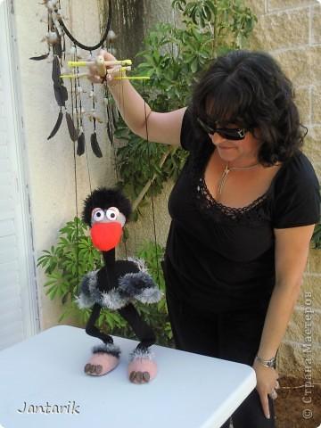 Это моя первая кукла-марионетка,которую я сделала на курсе кукол.Получился страусёнок по имени Муги.Вот такое странное имячко.Но мне кажется,что ему оно подходит. Кукла вырезана из поролона,сверху обклеена материалом Флиз,волосы,тело и крылья связаны крючком из пряжи-травки. Муги любит посидеть на дереве-оттуда далеко видно. фото 15