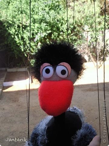 Это моя первая кукла-марионетка,которую я сделала на курсе кукол.Получился страусёнок по имени Муги.Вот такое странное имячко.Но мне кажется,что ему оно подходит. Кукла вырезана из поролона,сверху обклеена материалом Флиз,волосы,тело и крылья связаны крючком из пряжи-травки. Муги любит посидеть на дереве-оттуда далеко видно. фото 8
