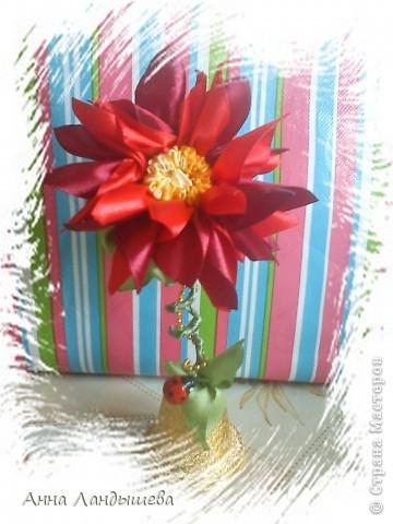 А у меня вот такие цветы-счастья! фото 8