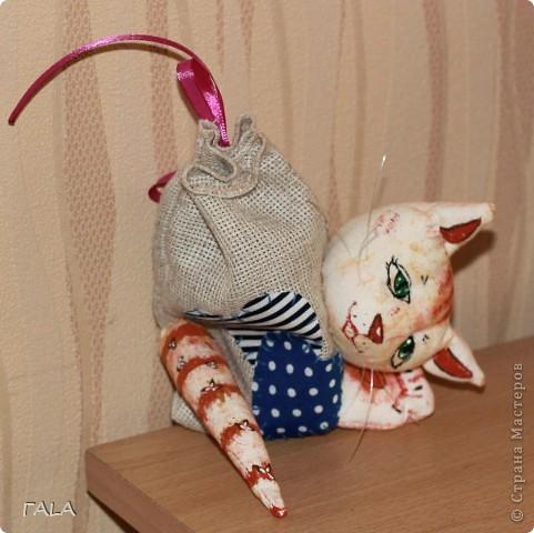 Кошка в мешке фото 1