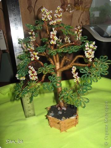 Это подарок моей куме на день рождения. Цветок - бугенвиллия. фото 2